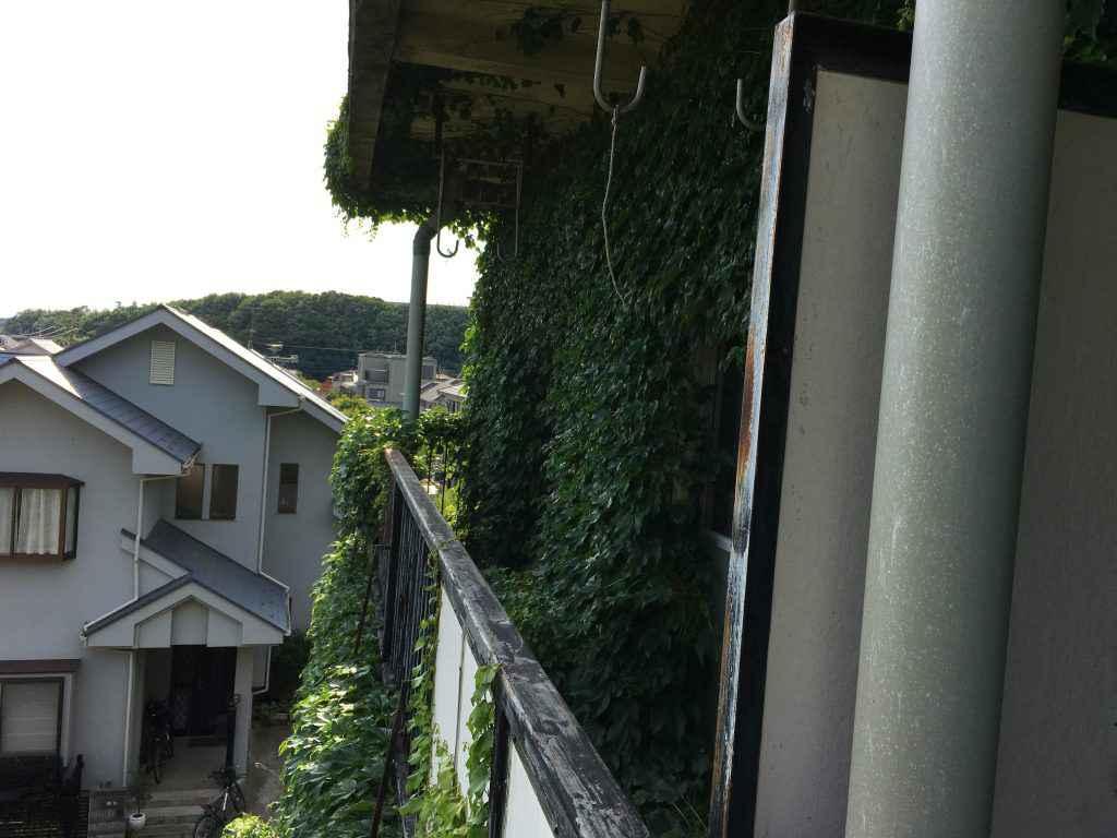 外観廊下IMG_5309